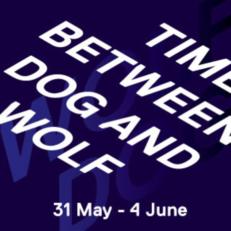 'Time Between Dog and Wolf': Master's Presentations