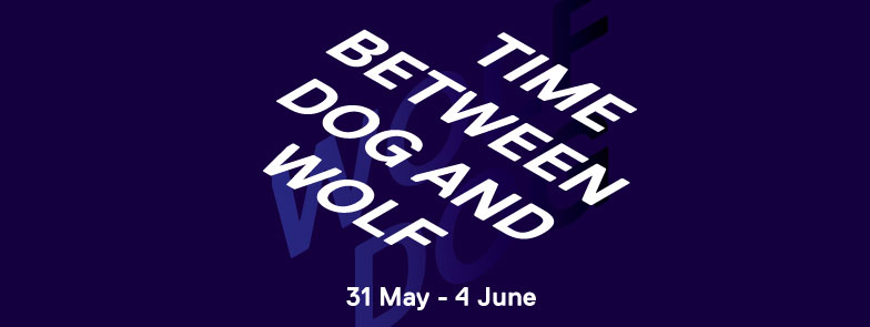DAS Master Presentations '17: 'Time Between Dog and Wolf'